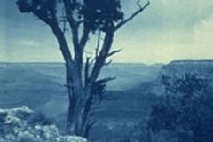 Pinhole cyanotype Grand Canyon 2