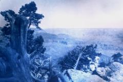 Pinhole cyanotype Untitled 03