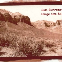 Gum bichromate Havasu canyon