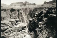 Platinum palladium Grand canyon