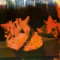 Tri-color Gum over Cyanotype Shell2