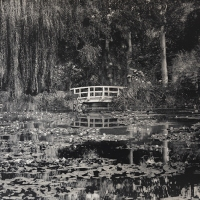 Platinum-palladium-Claude-Monets-garden