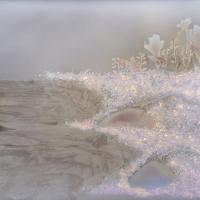 Lumen print Rocky Rivers Edge