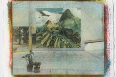 Gum bichromate Dreams from the marketplace