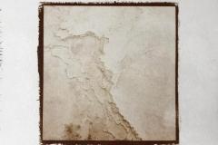 Salt print Mammoth