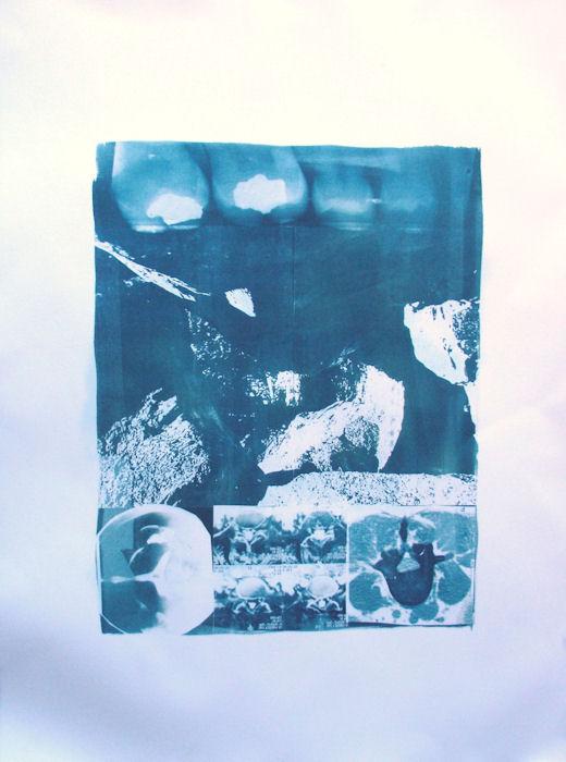 Cyanotype Growing Things