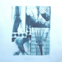 Cyanotype Fate In Hand