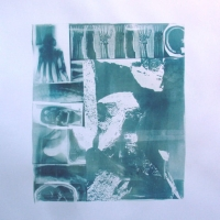 Cyanotype Swimming