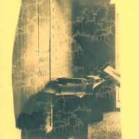 Cyanotype-on-colour-paper-Parade-Alerts-Cavities