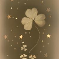Lumen print Clovers & Stars