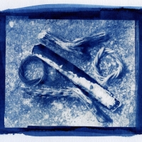 Cyanotype Beach 1