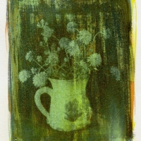 Gum bichromate Kitchen Flowers
