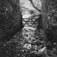 Pinhole Meldon Quarry