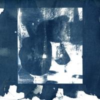 Cyanotype Today