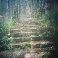 Pinhole Steps - accidental double exposure