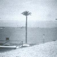Pinhole Three Palms Coma Ruga Catalunya