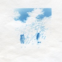 Cyanotype-Found-by-the-rose-bush-in-blue