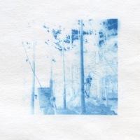 Cyanotype-Found-climbing-in-blue