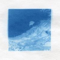 Cyanotype-Found-tree-in-blue