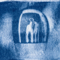 Cyanotype-Reflections-of-the-past