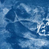 Cyanotype-Soul-portrait
