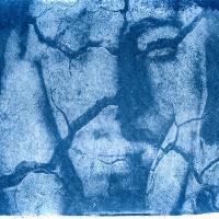 Cyanotype-Uncertain-life