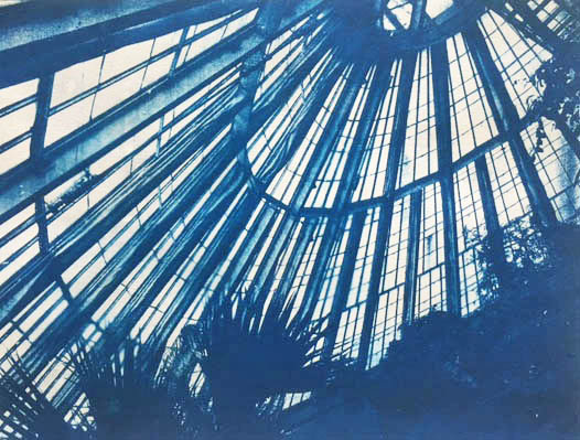 Cyanotype-Greenhouse-botanical-garden