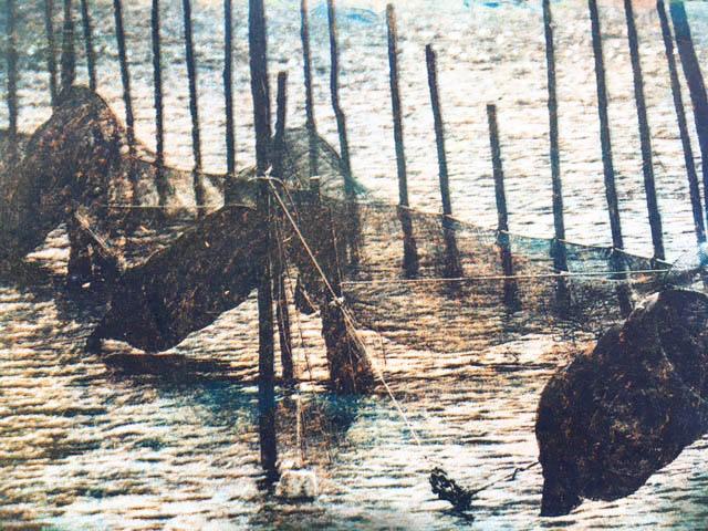 Photogravure-Nets