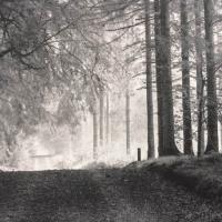 Photogravure-Parforce-landscape