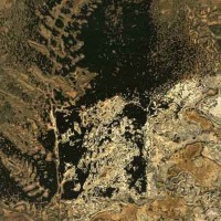 Chemigram-Elements-1-Peggy-Reeves