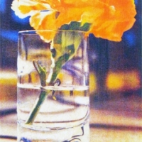Casein pigment print Floral Carnation in Glass