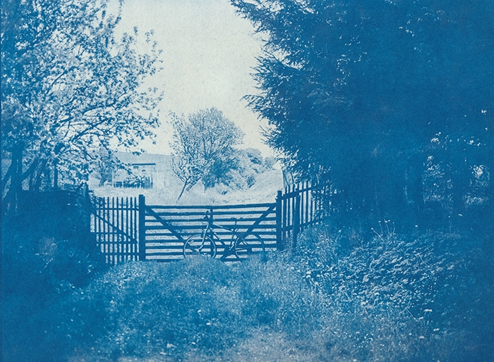 Cyanotype Country