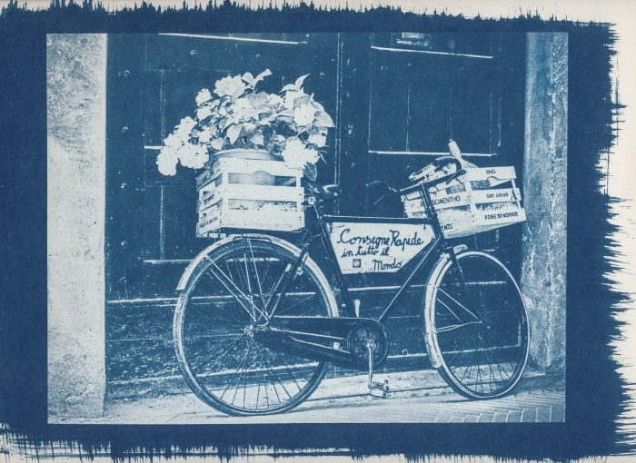 Cyanotype Still life with bicycle II