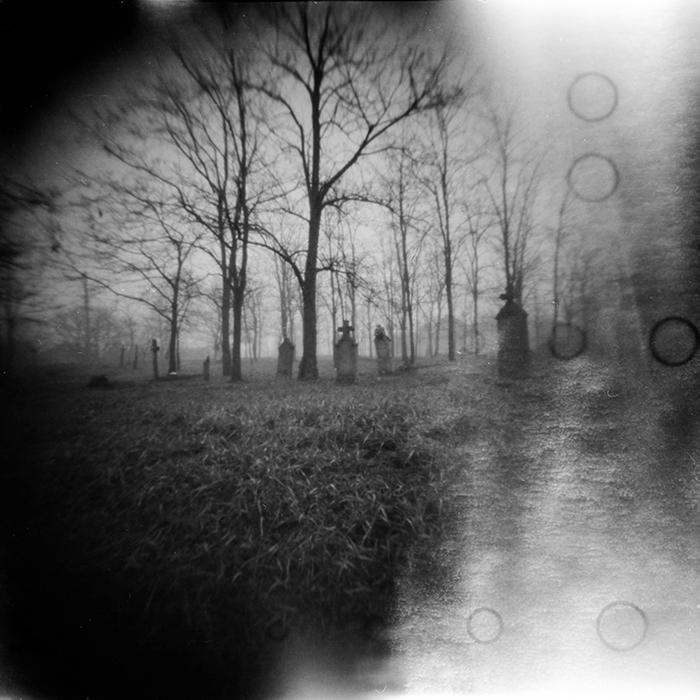 Pinhole Dark forest