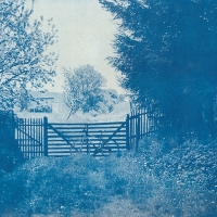 Cyanotype Country