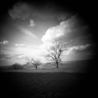 Pinhole The countryside