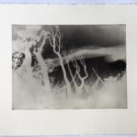 Photopolymer gravure IV
