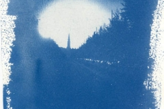 Cyanotype Untitled 9