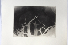 Photopolymer gravure V