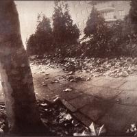 Pinhole Vandyke Claire Latouche Autumn Leaves