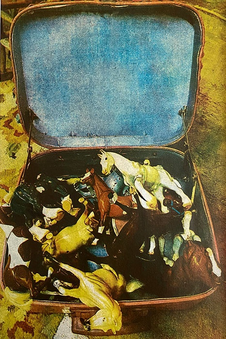Gum-print-Case-Of-Horses