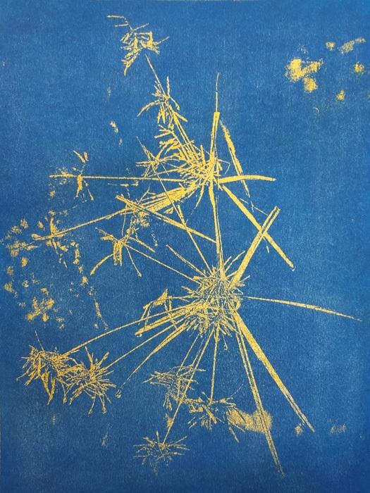 Gumoil-Firework-Plant