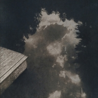 Coffe toned cyanotype Pond Reflection CT