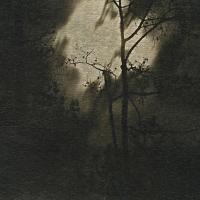 Coffe toned cyanotype Time Lapse Night