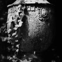 Gum bichromate Cemetery 02