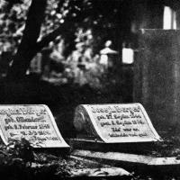 Gum bichromate Cemetery 11
