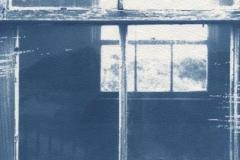 Cyanotype Looking Through