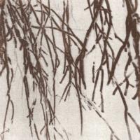 Saltprint Veil