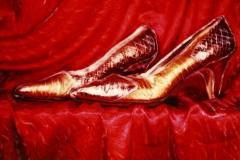 Polaroid SX-70 Golden Shoes 1