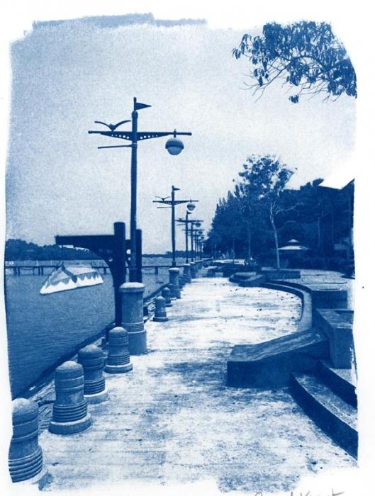 Cyanotype Ocean Front